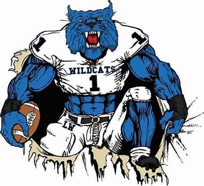 Wildcat Temple Wildcats Football Kentucky Clipart Team