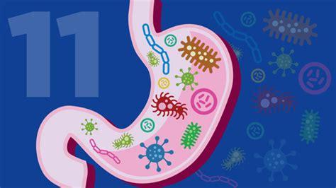 microbes  microbiomes