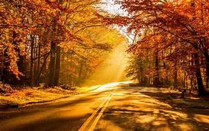 Wallpaper Fall Foliage, Autumn, HD, 4K, Nature, #3012  Fall