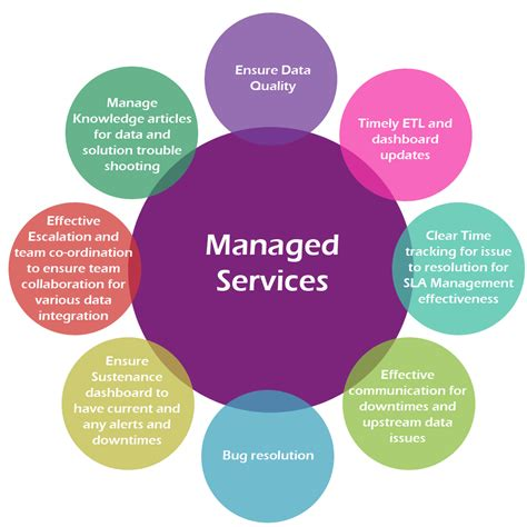 analytic managed services aegis company