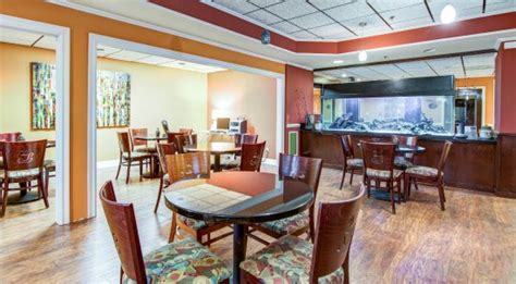 comfort inn athens ga comfort inn suites athens updated 2018 hotel reviews