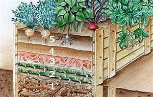 Hochbeet Befüllen Rindenmulch : hochbeet bef llen diese schichten steigern den ernte erfolg hochbeet garten hochbeet und ~ A.2002-acura-tl-radio.info Haus und Dekorationen