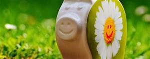 Wasser Sparen Dusche : wasser sparen douche sensation umweltaspekte und genuss in einem ~ Yasmunasinghe.com Haus und Dekorationen
