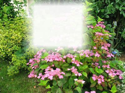 icone de bureau montage photo cadre nature et fleurs pixiz