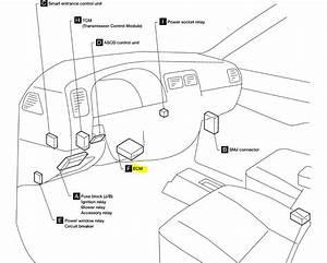 Nissan Xterra Ignition Wiring Diagram Michel Lozato 41478 Enotecaombrerosse It