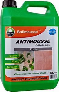 Traitement Anti Mousse : produit anti mousse terrasse ~ Farleysfitness.com Idées de Décoration