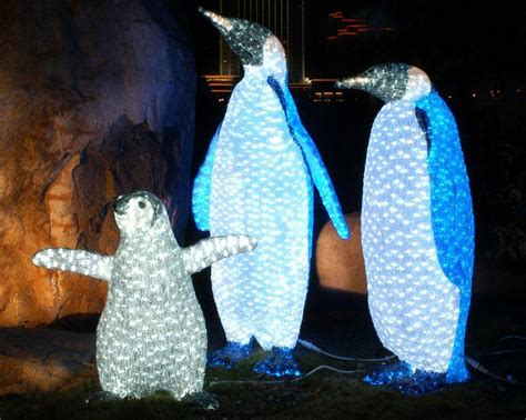 saint louis zoo christmas lights 12 great things about the holidays in and around st louis
