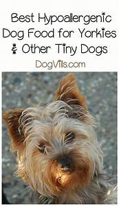 best hypoallergenic dog food for yorkies With best dog food for yorkies