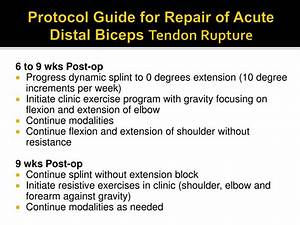 Ppt - Distal Bicep Ruptures Powerpoint Presentation
