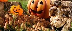 Gruselige Halloween Deko Selber Machen : gruselige halloween dekorationen preiswert selber machen ~ Yasmunasinghe.com Haus und Dekorationen