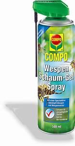 Anti Wespen Spray : spray gegen wespen excellent profi als und verneblung with spray gegen wespen finest optisches ~ Whattoseeinmadrid.com Haus und Dekorationen