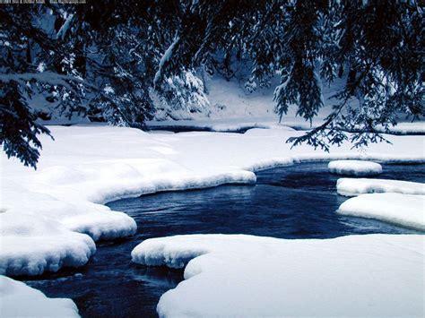 beautiful winter snow pics