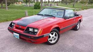 What's The Most Fun Ford Mustang You Could Buy For $10k?