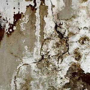 Produit Contre L Humidité : gel hydrophobe en phase aqueuse contre l 39 humidit ~ Premium-room.com Idées de Décoration