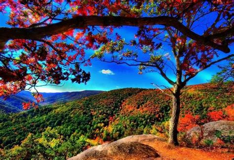 Appalachian Mountains Fall Iphone Wallpaper by Appalachian Mountains In Usa Scenery