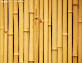 Bamboo Flooring Kitchen Pros Cons