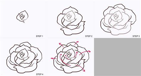 drawing roses   draw drawings rose drawing