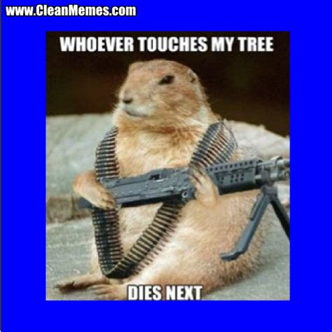 Funniest Memes Ever - best memes ever clean image memes at relatably com