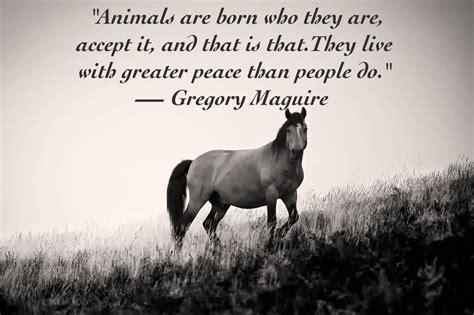 popular animals quotes  sayings golfiancom
