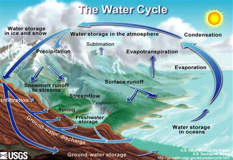water cycle  kids   works diagram facts