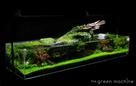 Green Machine Aquascape by The Green Machine Aquascaping Superstore Tutorials