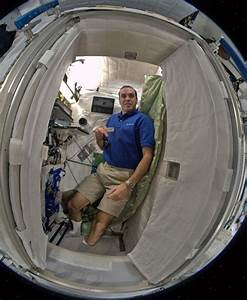 Space Station Sleeping Quarters - Pics about space