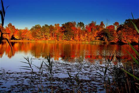 fall colors  catskills fall colors   catskills