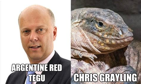 Lot Lizard Meme - 7 unforgettable images to remember chris grayling s time as justice secretary by legal cheek