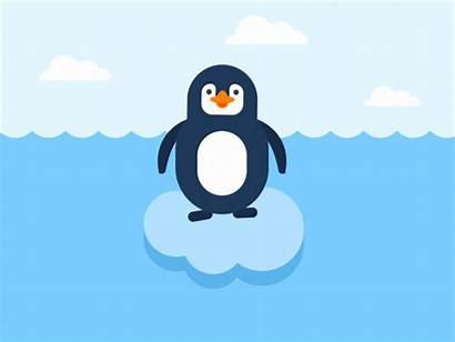 Penguin Animation Animated Dribbble Penguins Iceberg Shot