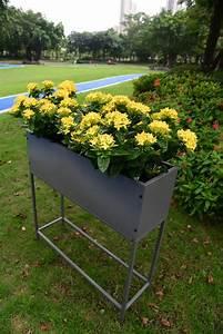 Raised, Planter, Box, 800x240x800