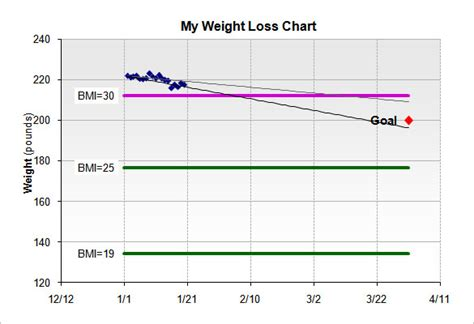 weight loss chart template   sample