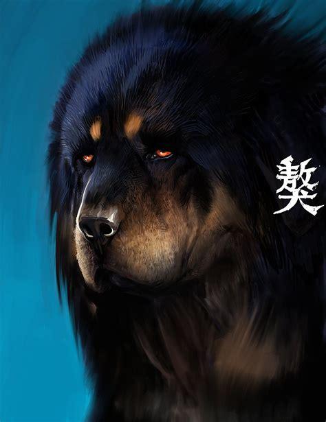 Tibetan Mastiff Qritiq