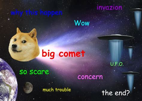doge the doge google search doge is life