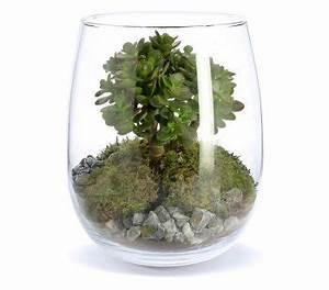 Acheter Terrarium Plante : mini jardin o acheter un terrarium et comment le faire soi m me i blog ma maison beko ~ Teatrodelosmanantiales.com Idées de Décoration
