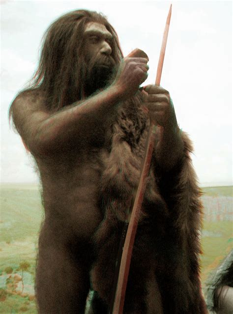neanderthal genome sequencing yields surprising results and opens a new door to future studies