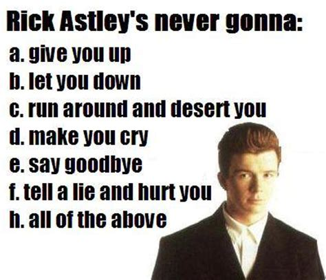 Never Gonna Give You Up Meme - rick astley s never gonna stupid people funny picture