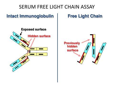 high kappa light chain serum free light chains