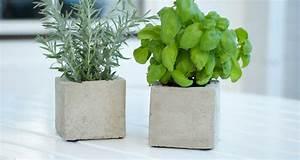 Pflanzen Kübel Beton : diy pflanzen cubes aus beton sch n bei dir by depot ~ Sanjose-hotels-ca.com Haus und Dekorationen