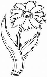 Coloring Daisy Flowers Printable Sheets Columbine sketch template