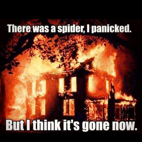 Spider In House Meme - percy sigh really you couldn t wait for me to get home before you torched it annabeth