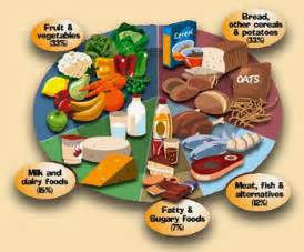 Fitness Mag: Weight Loss Solutions Dietary Fats