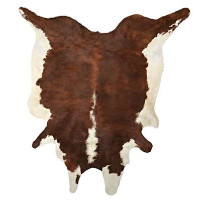 cowhide rugs  model formfonts  models textures