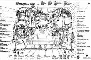 12  1986 Lincoln Town Car Wiring Diagram