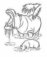 Hippo Coloring Pages Wild Animals Hippopotamus Animal Printable Line Drawing Yawning Sheets Adult Hippos Honkingdonkey Colouring African Zoo Sheet Activity sketch template