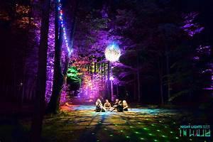 2017, Night, Lights, Festival, At, The, Heron, Grounds, U2013, Buffalo, Rising