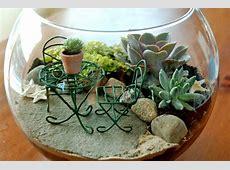 Top 25 Indoor, Outdoor and Terrarium Fairy Garden Ideas