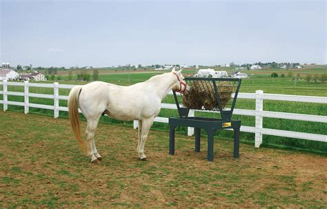 hay feeders for horses small bale feeders farmco feeders