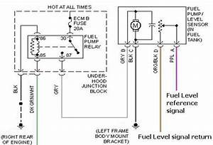 Fuel Pump Wiring Diagram 2003 Ford Expedition