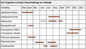 Gelbe Tafeln Schädlinge : kapitel 12 pflanzenschutz lohrberg blog ~ Lizthompson.info Haus und Dekorationen