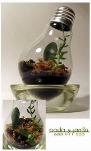 Light Bulb Terrarium DIY - How to by Poda y Jardin